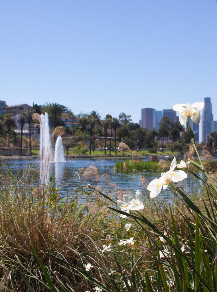 Echo Park | Los Angeles, CA